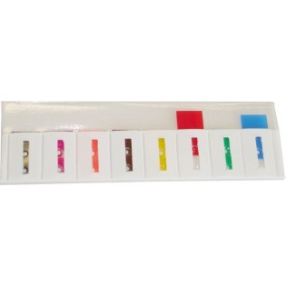 10-103700 DS-8 Dauersignalleiste mit 8 Signalen